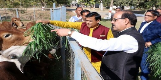 Benefit of Embryo Transfer Technology should reach Farmers: Lakhan Singh Yadav