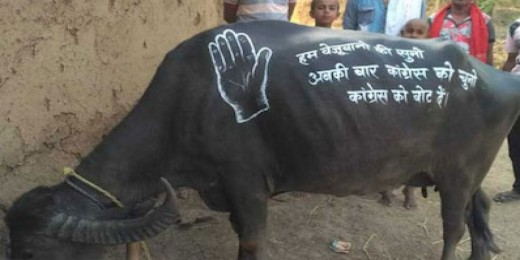 Beware of use of Animals for Election Campaign !!!