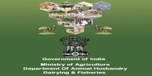 National Livestock Mission aims to focus on entrepreneurship development and breed improvement