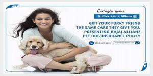 Now enjoy hassle free Pet ownership experience through Pet Dog insurance