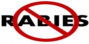 Rabies is now a notifiable disease in India