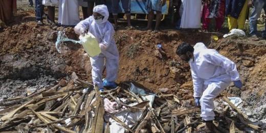 Bird flu spreads to Gujarat